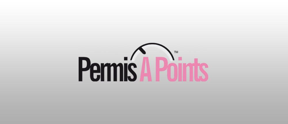 Permis a points